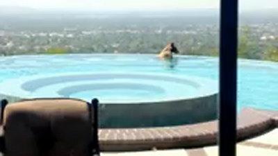 Un oso toma un ba o en la piscina de una familia for Piscinas insolitas