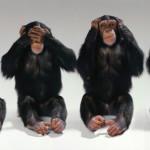 Tres monos no, son cuatro monos sabios
